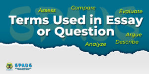 Terms used in Essay or Question
